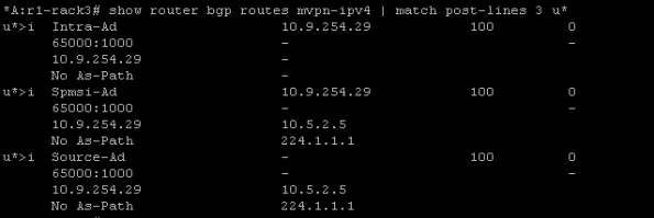 bgp routes incl spmsi